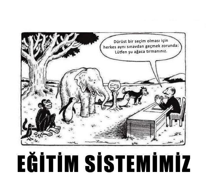 türkiye'deki eğitim sistemi ekşi