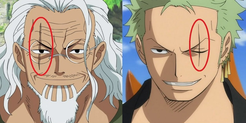 zoro and rayleig scar eye