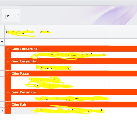 C# DevExpress GridView Grup Başlık Renklendirme