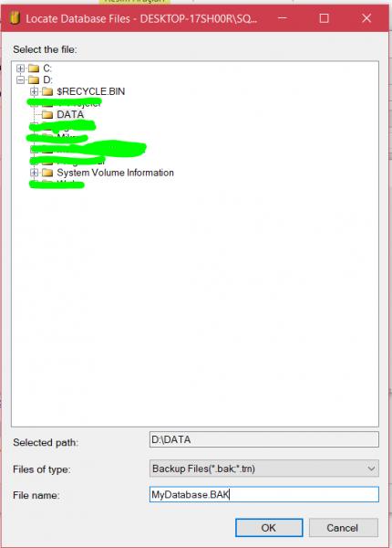 sql server backup database 4