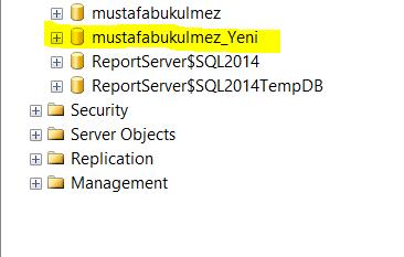 sql server restore database 5