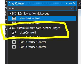 C# User Control Kullanımı 3