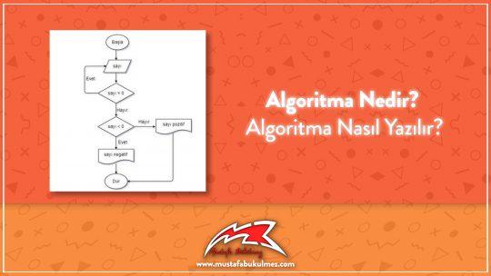 Algoritma Nedir? Algoritma Nasıl Yazılır?