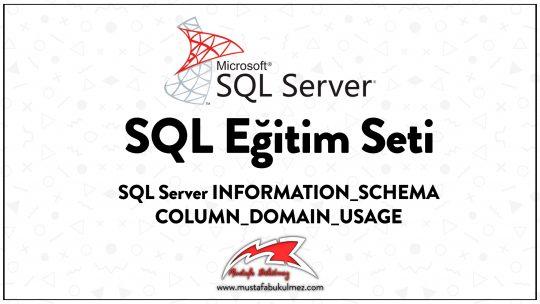 SQL Server INFORMATION_SCHEMA COLUMN_DOMAIN_USAGE