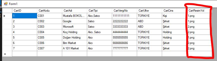 C# DataGridView Resim Gösterme